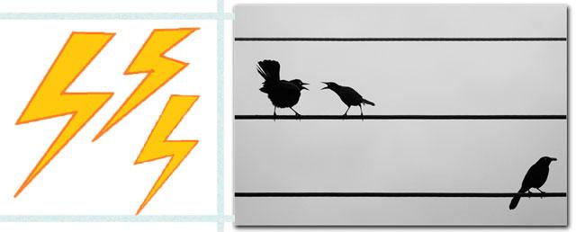 У птиц бывает электрический шок, когда они сидят на проводах?